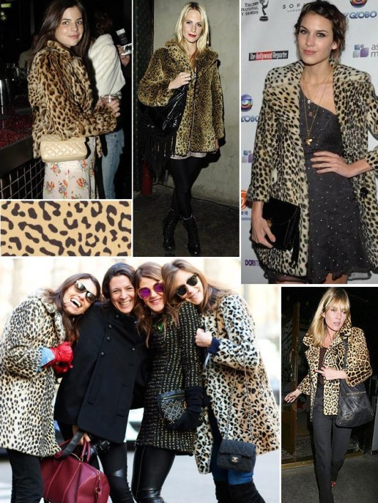 at seeing me in my new-ish Zara leopard print coat was sheer horror.