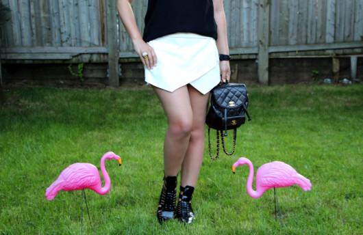 flamingos-2