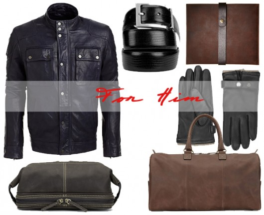 danier-holiday-gift-ideas-2013-for-him