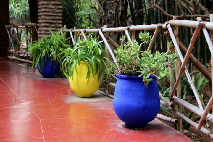 majorelle-gardens-morocco-10