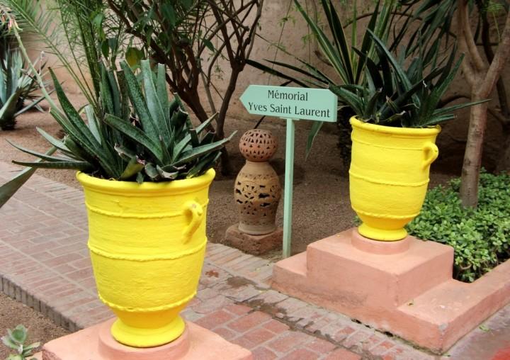 majorelle-gardens-morocco-6