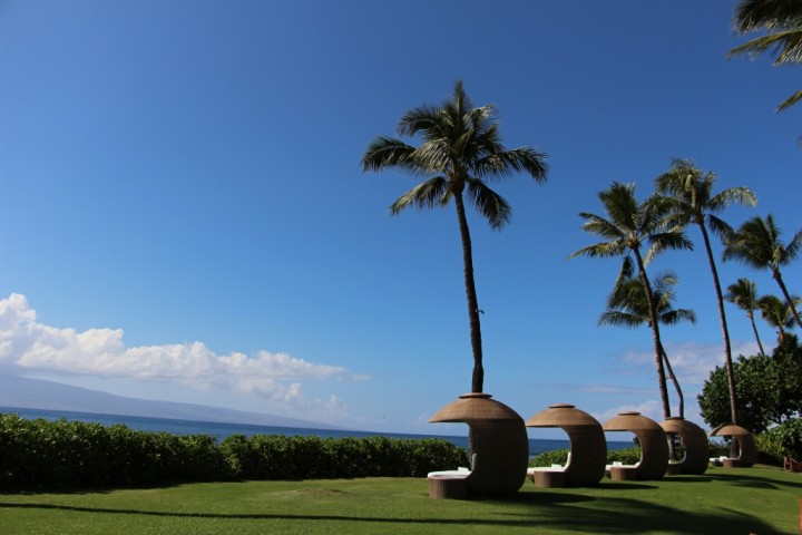 hyatt-regency-maui-resort-and-spa-review-3